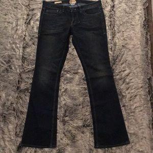 Size 31 William Rast Stella Bootcut jeans.